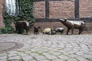 Schweinerei in der Westfleth-Passage